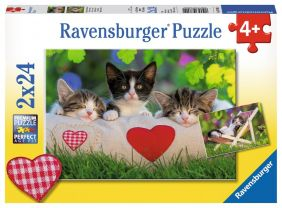 SLEEPY KITTENS 2X24-PIECE PUZZLE
