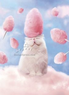 COTTON CANDY CAT BIRTHDAY CARD