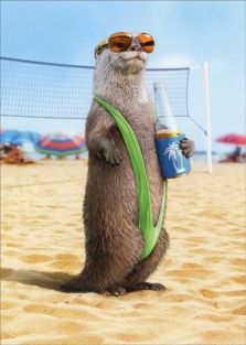 OTTER WEARING MANKINI BIRTHDAY