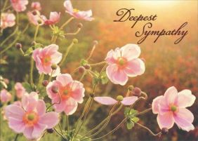 JAPANESE WILDFLOWER SYMPATHY C