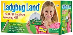LADYBUG LAND #2100 BY INSECT L