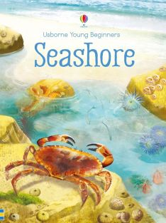 SEASHORE-YOUNG BEGINNERS BOOK