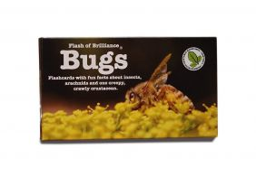 BUGS FLASHCARDS