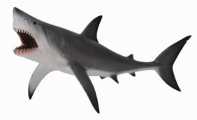 GREAT WHITE SHARK-OPEN JAW FIG