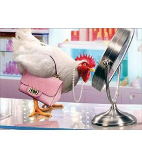 avanti-press_funny-birthday-card-chicken_01.jpg