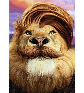 avanti-press_lion-with-comb-over-father_01.jpg
