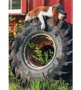 avanti-press_relaxing-dog-on-tractor-tire-fathers_01.jpg