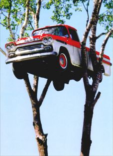 AVANTI PICK UP TRUCK IN TREE JUST FOR FUN CARD #200720