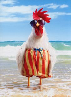 ROOSTER WEARS SWIMSUIT BIRTHDAY CARD