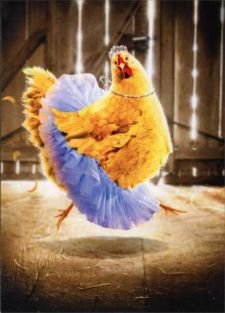 CHICKEN IN TUTU BIRTHDAY CARD