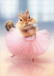 CHIPMUNK BALLERINA BIRTHDAY