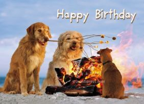S'MORE DOGS BIRTHDAY CARD
