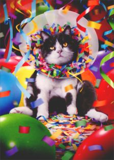 CAT IN PARTY CONE BIRTHDAY