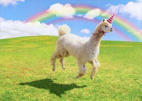ALPACA UNICORN BIRTHDAY