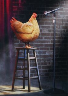 STAGE CHICKEN BIRTHDAY CARD