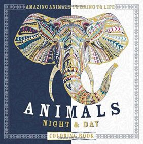 ANIMALS NIGHT & DAY COLORING