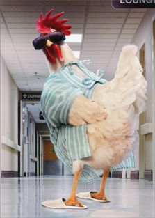 ROOSTER HOSPITAL GOWN GET WELL