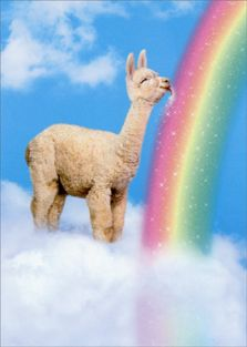 LLAMA LICKS RAINBOW FRIENDSHIP CARD
