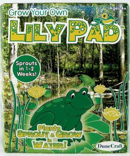 (D)GROW YOUR OWN LILY PAD