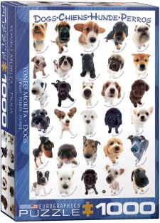 DOGS 1000PC
