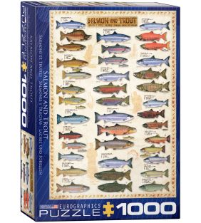 eurographics_1000-pc-salmon-trout_01.jpg