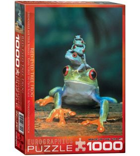 eurographics_red-eyed-tree-frog-1000-pc_01.jpg