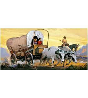 glencoe_covered-wagon-with-oxen_01.jpg