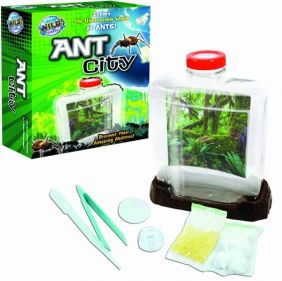 WILD! SCIENCE ANT CITY KIT #WS