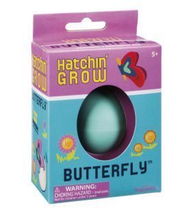 toysmith_butterfly-hatchin-grow_01.jpg