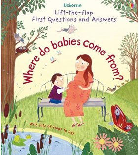 usborne_lift-flap_where-do-babies-come-from_01.jpg